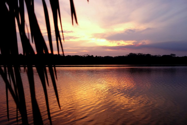 Bolivia - Serere Reserve - Sunset
