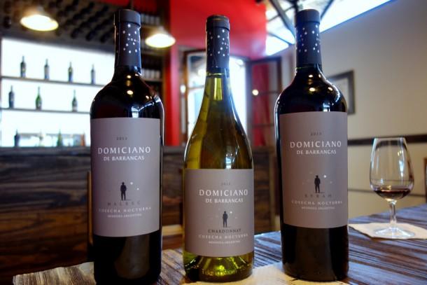Argentina - Maipu, Domiciano Winery, wine tasting