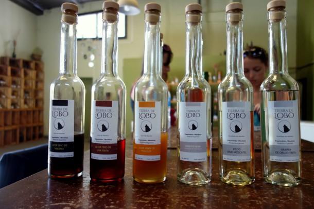 Argentina - Maipu, Tierra de Lobo Destillery