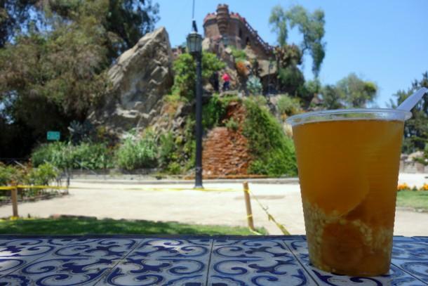 Chile - Santiago, Mote con Huesillo Drink at Cerro Santa Lucia