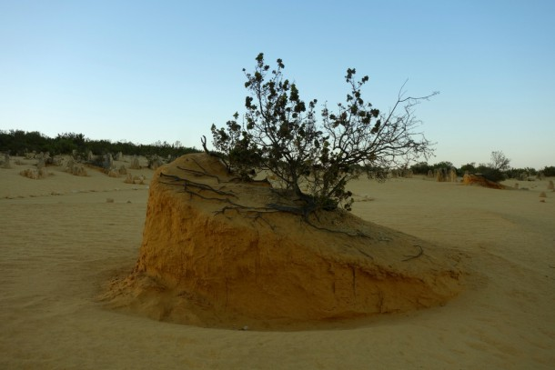 Australia - Cervantes, Pinnacles Desert